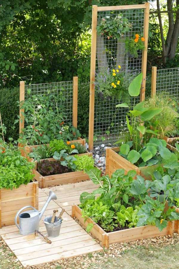 Growing Your Own Fruits And Vegetables In The Yard Lets You Spend More Time  Outside, At The Same Time Saves Your Money For Buying Organic Food.